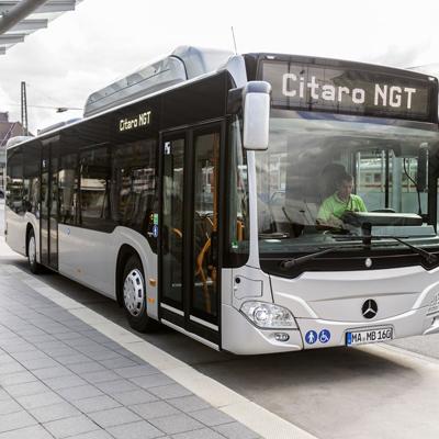 Autobus citaro